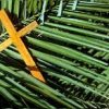 Domingo de Ramos terá Missa Paroquial